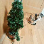 猫とクリスマスツリー