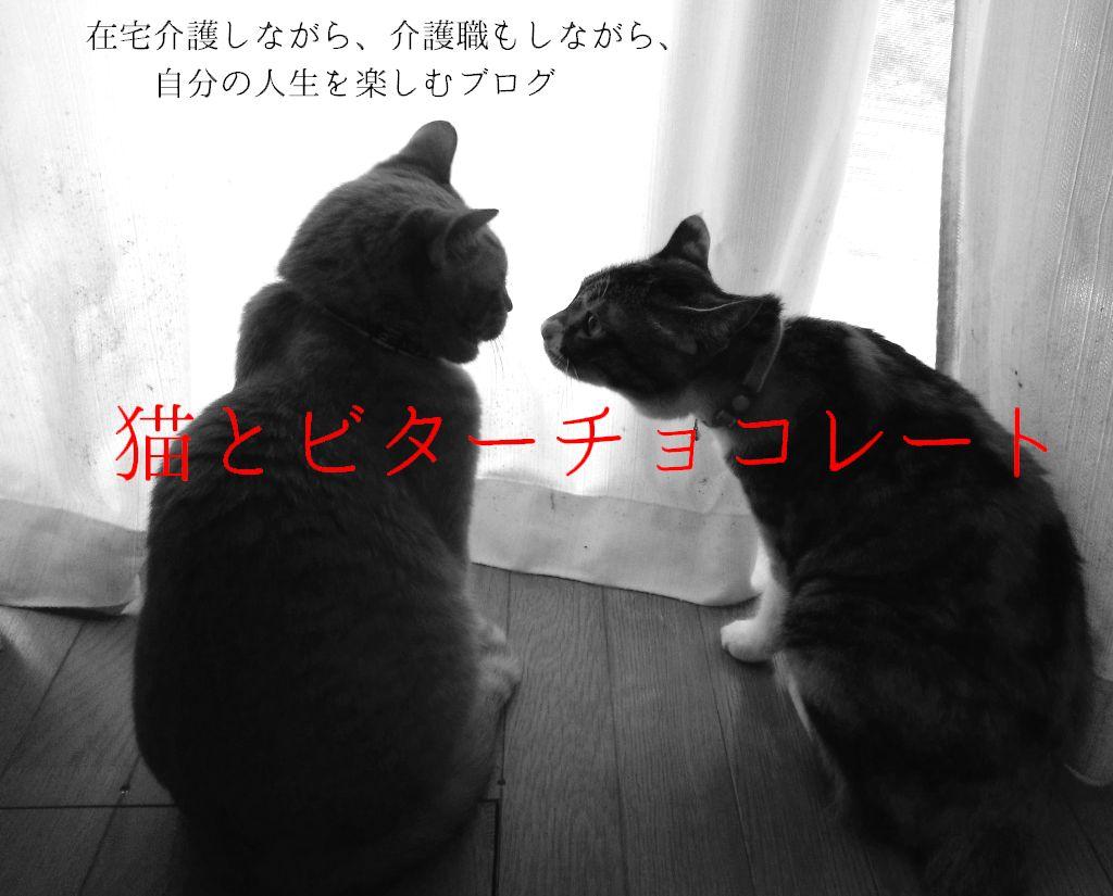猫とビターチョコレート